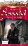 """""""Tynget av skyld"""" av Frid Ingulstad"""