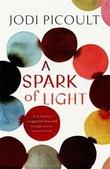 """""""A spark of light"""" av Jodi Picoult"""
