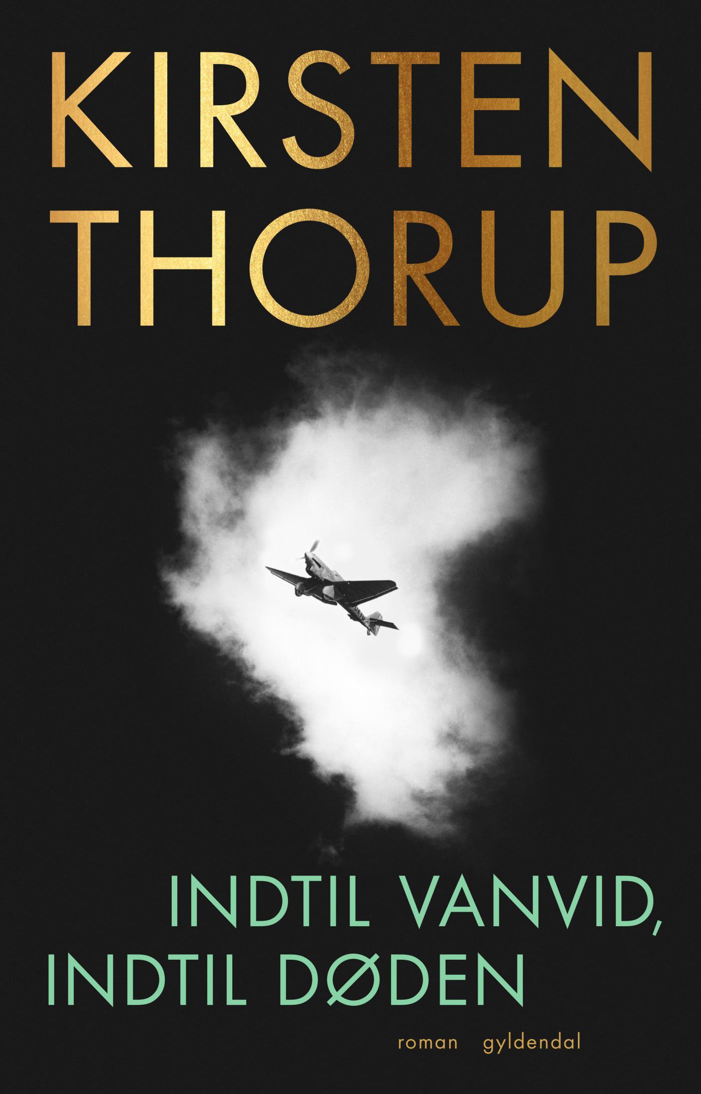"""""""Indtil vanvid, indtil døden"""" av Kirsten Thorup"""
