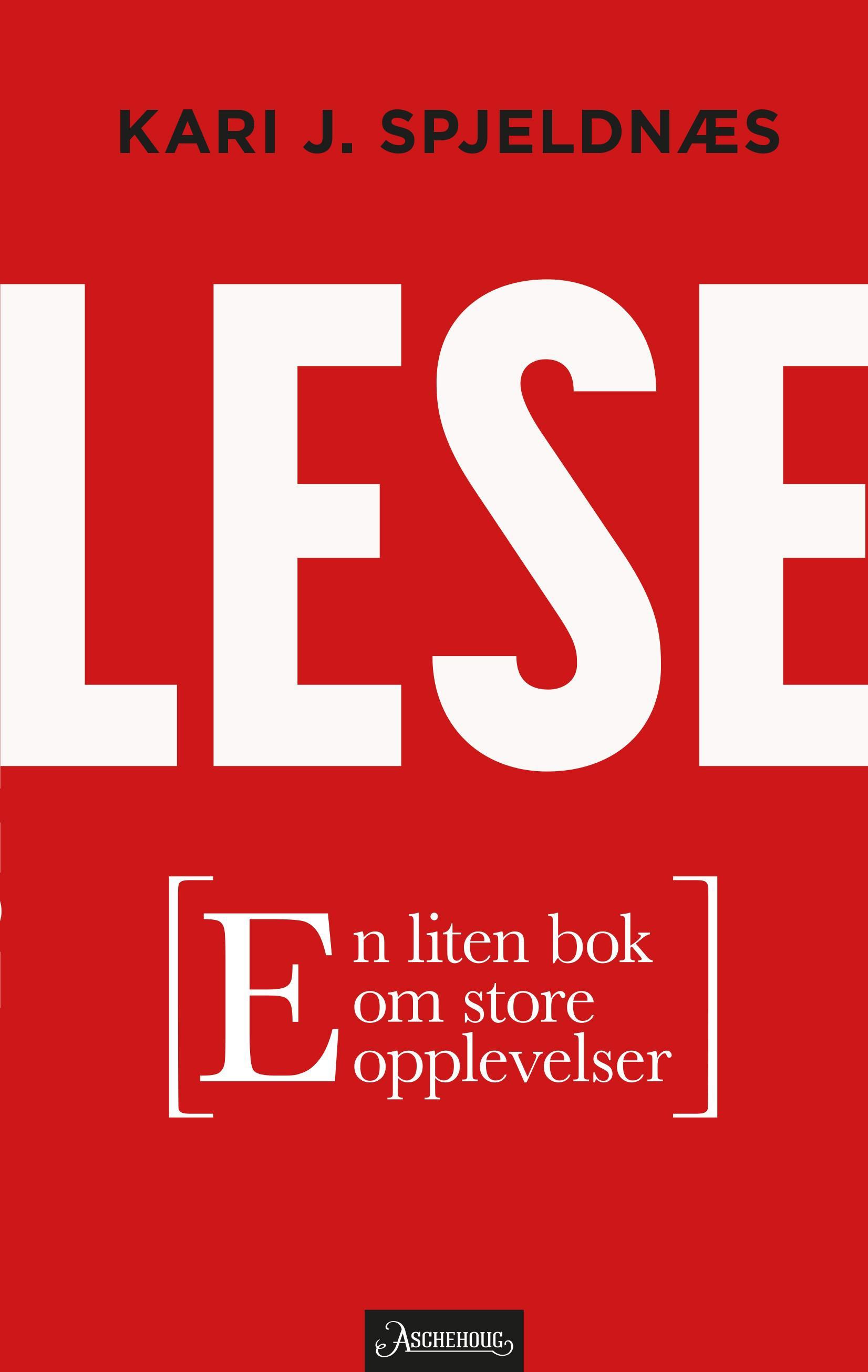"""""""Lese - en liten bok om store opplevelser"""" av Kari J. Spjeldnæs"""