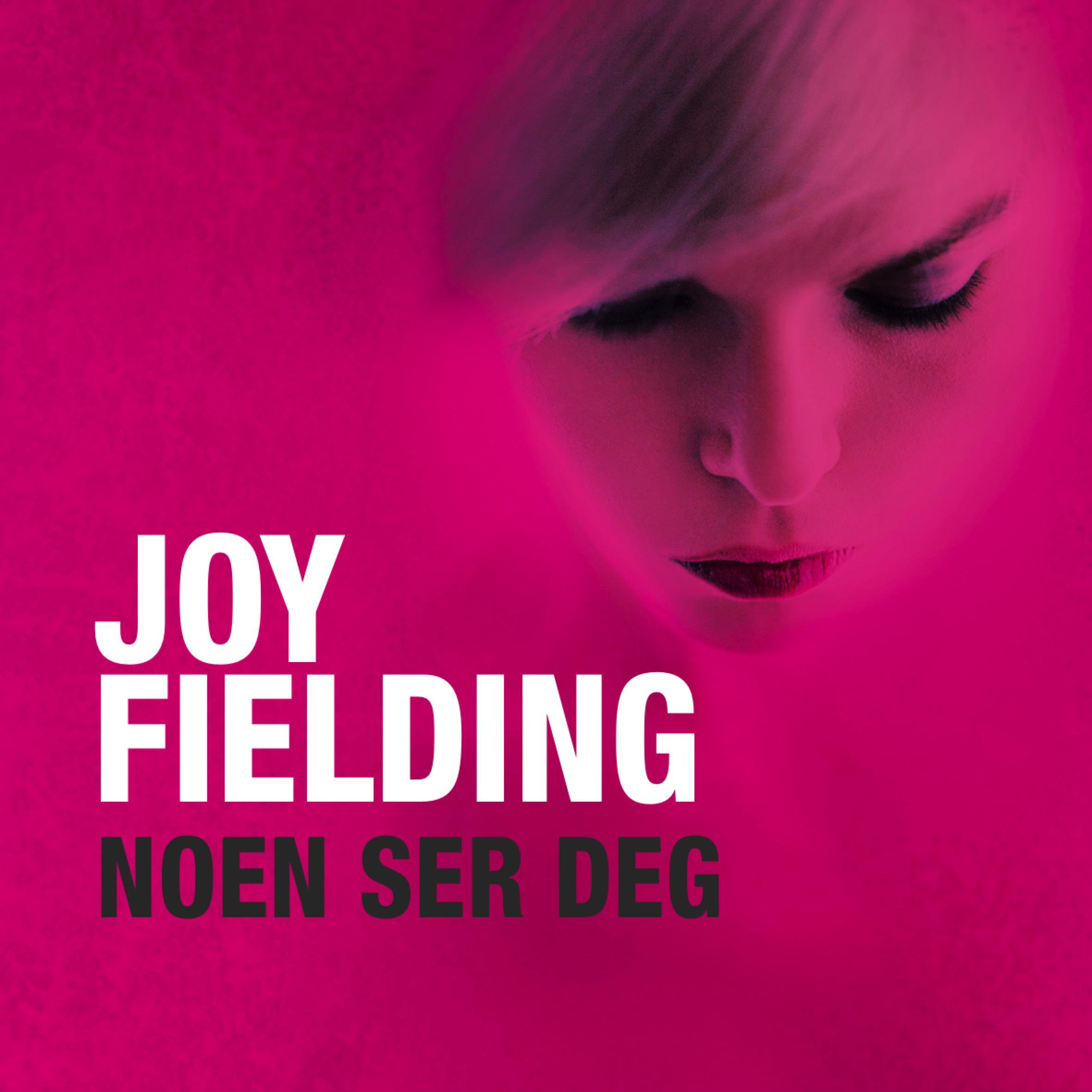 """""""Noen ser deg"""" av Joy Fielding"""