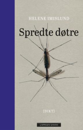 """""""Spredte døtre"""" av Helene Imislund"""