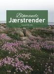 """Blømande Jærstrender"" av Harald Vik-Mo"