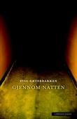 """""""Gjennom natten"""" av Stig Sæterbakken"""