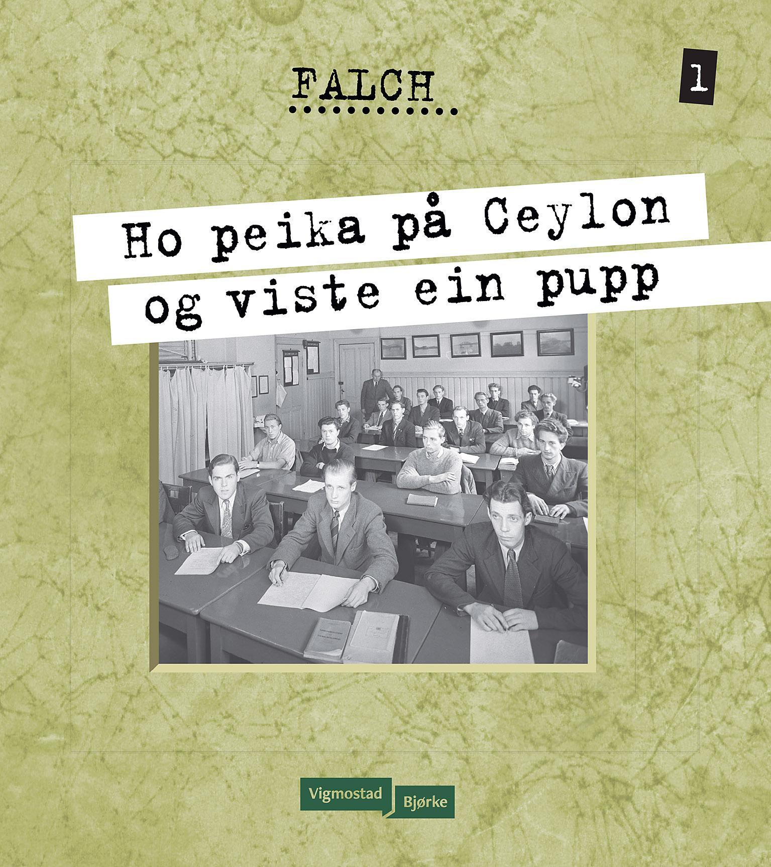 """""""Ho peika på Ceylon og viste ein pupp"""" av Sigmund Falch"""