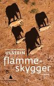 """Flammeskygger - roman"" av Geir Stian Orsten Ulstein"