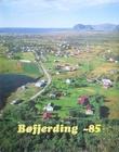 """""""Bøfjerding '85"""""""