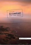 """Grimstad sett fra lufta"" av Johnny Foss"