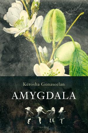 """Amygdala - roman"" av Kerosha Gonaseelan"
