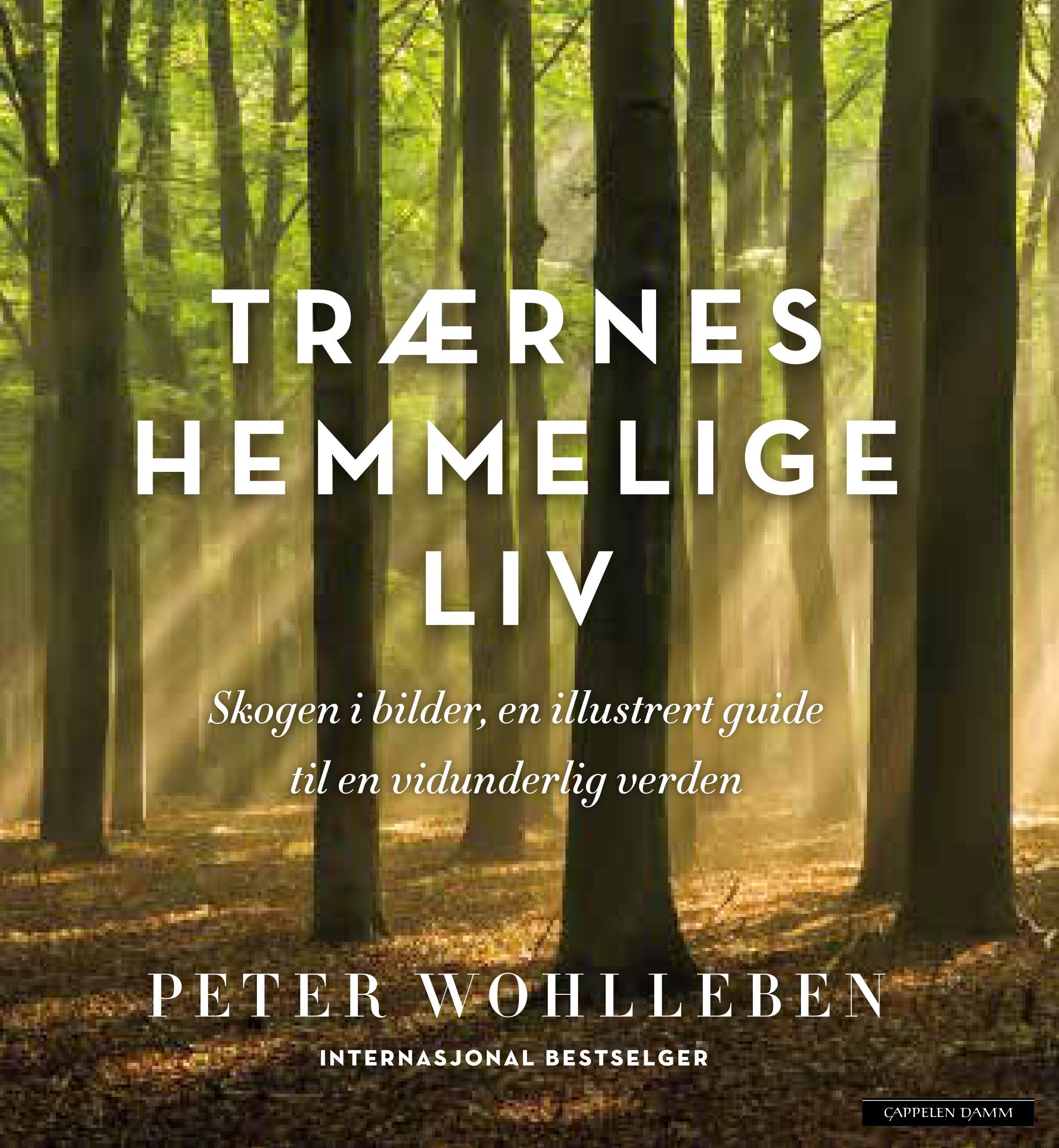 """""""Trærnes hemmelige liv - skogen i bilder"""" av Peter Wohlleben"""