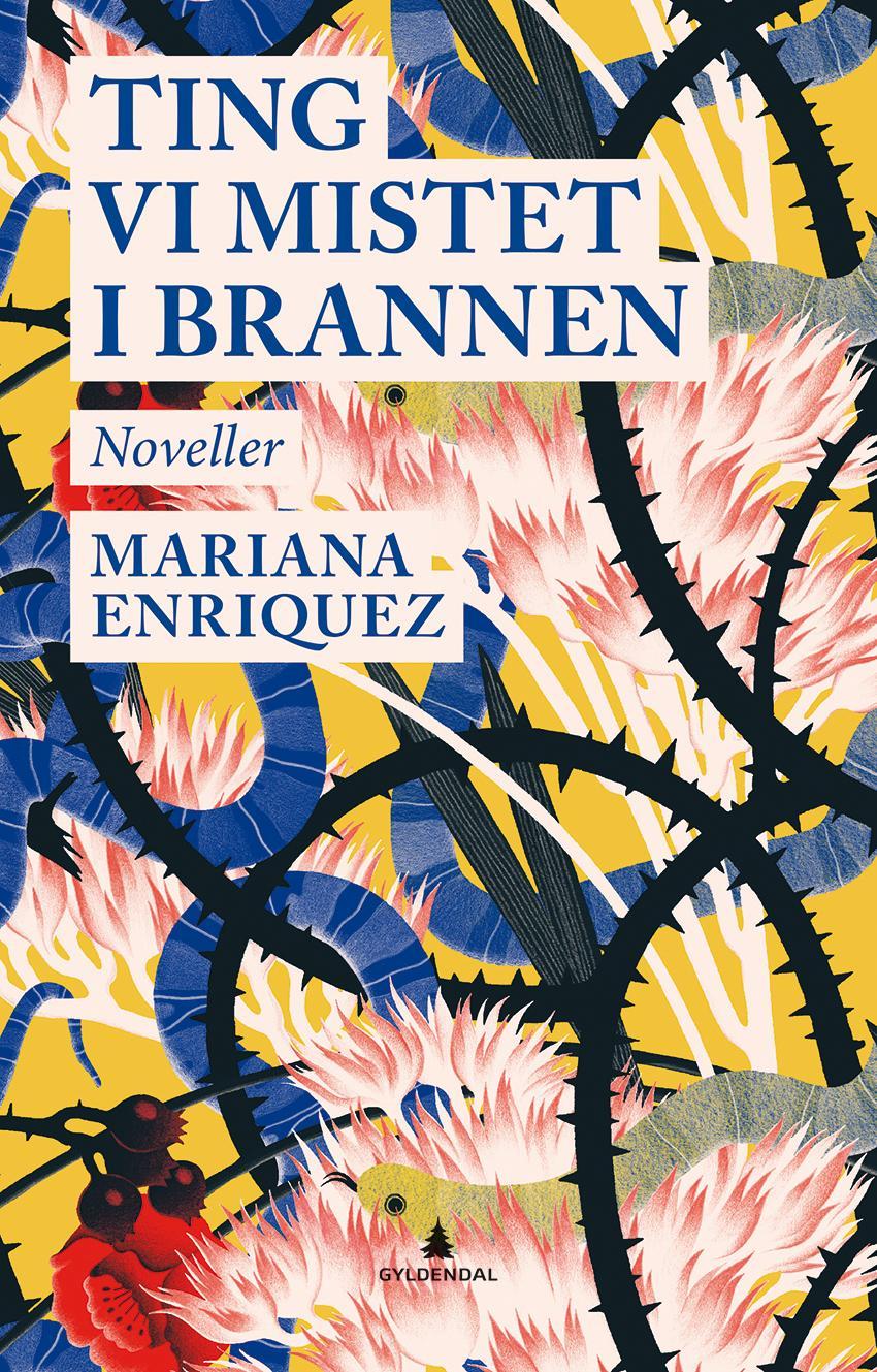 """""""Ting vi mistet i brannen"""" av Mariana Enriquez"""
