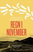 """""""Regn i november"""" av Auður Ava Ólafsdóttir"""