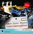"""""""Undervannsgåten"""" av Jørn Lier Horst"""