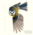 """""""Nære fugler"""" av Roine Magnusson"""