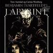 """""""Benjamin Svartfeldts labyrint"""" av Tore Aurstad"""