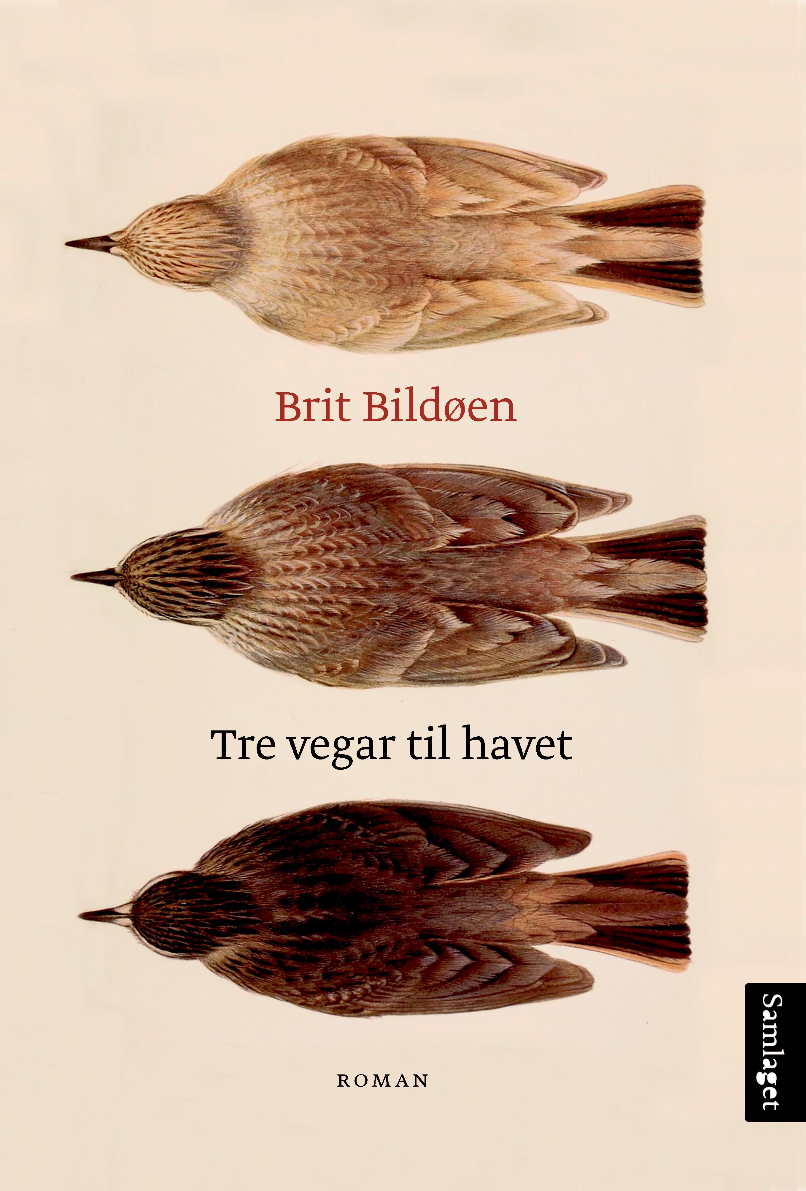 """""""Tre vegar til havet - roman"""" av Brit Bildøen"""