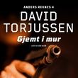"""""""Gjemt i mur"""" av David Torjussen"""