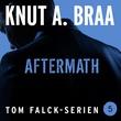 """""""Aftermath"""" av Knut Arnljot Braa"""