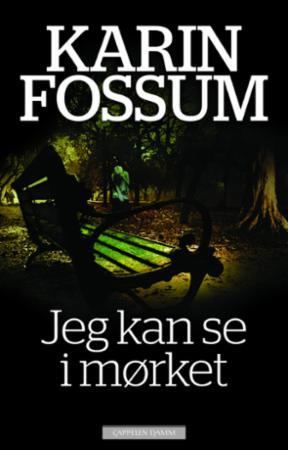 """""""Jeg kan se i mørket - roman"""" av Karin Fossum"""