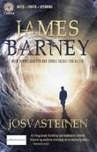 """""""Josvasteinen"""" av James Barney"""