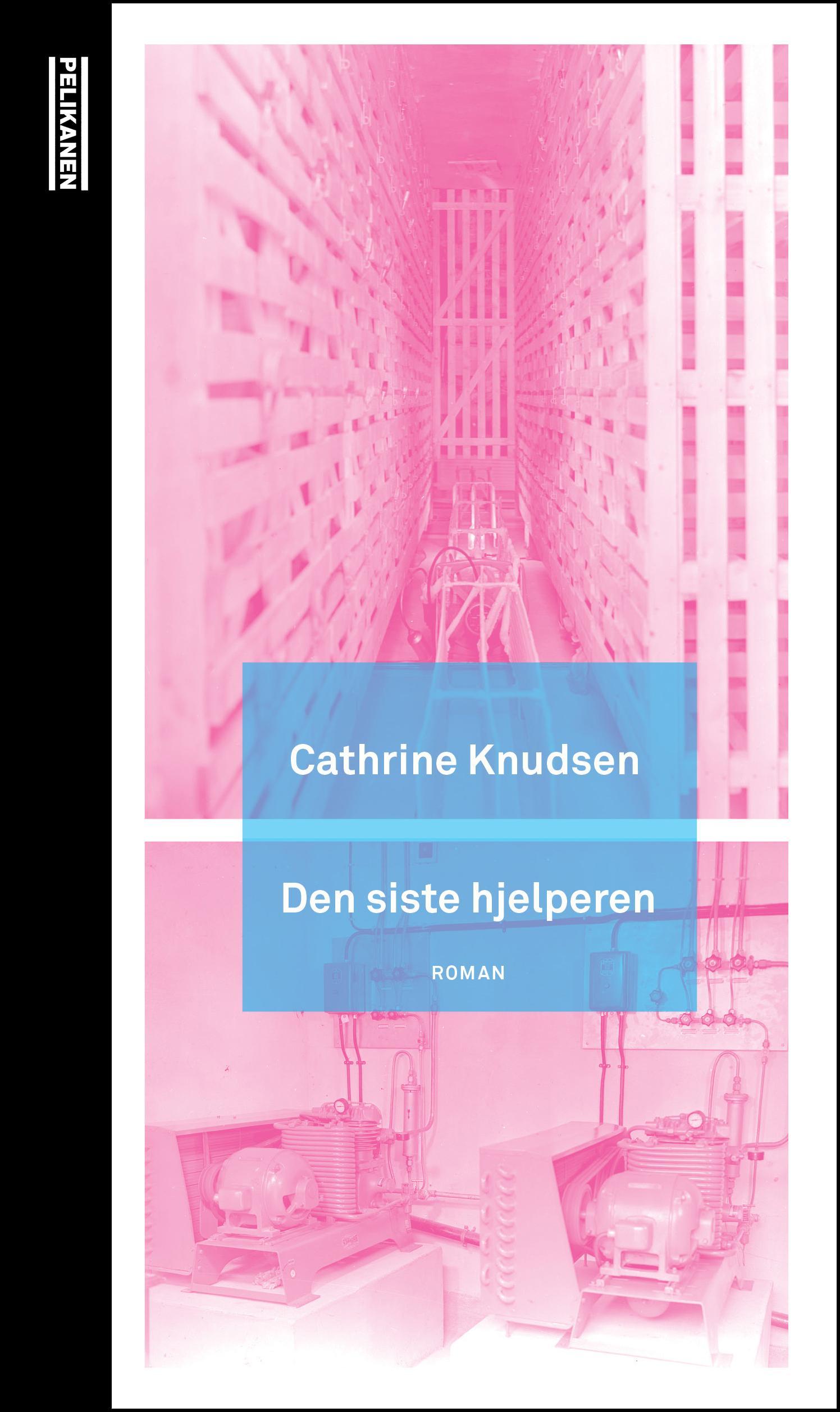 """""""Den siste hjelperen - roman"""" av Cathrine Knudsen"""