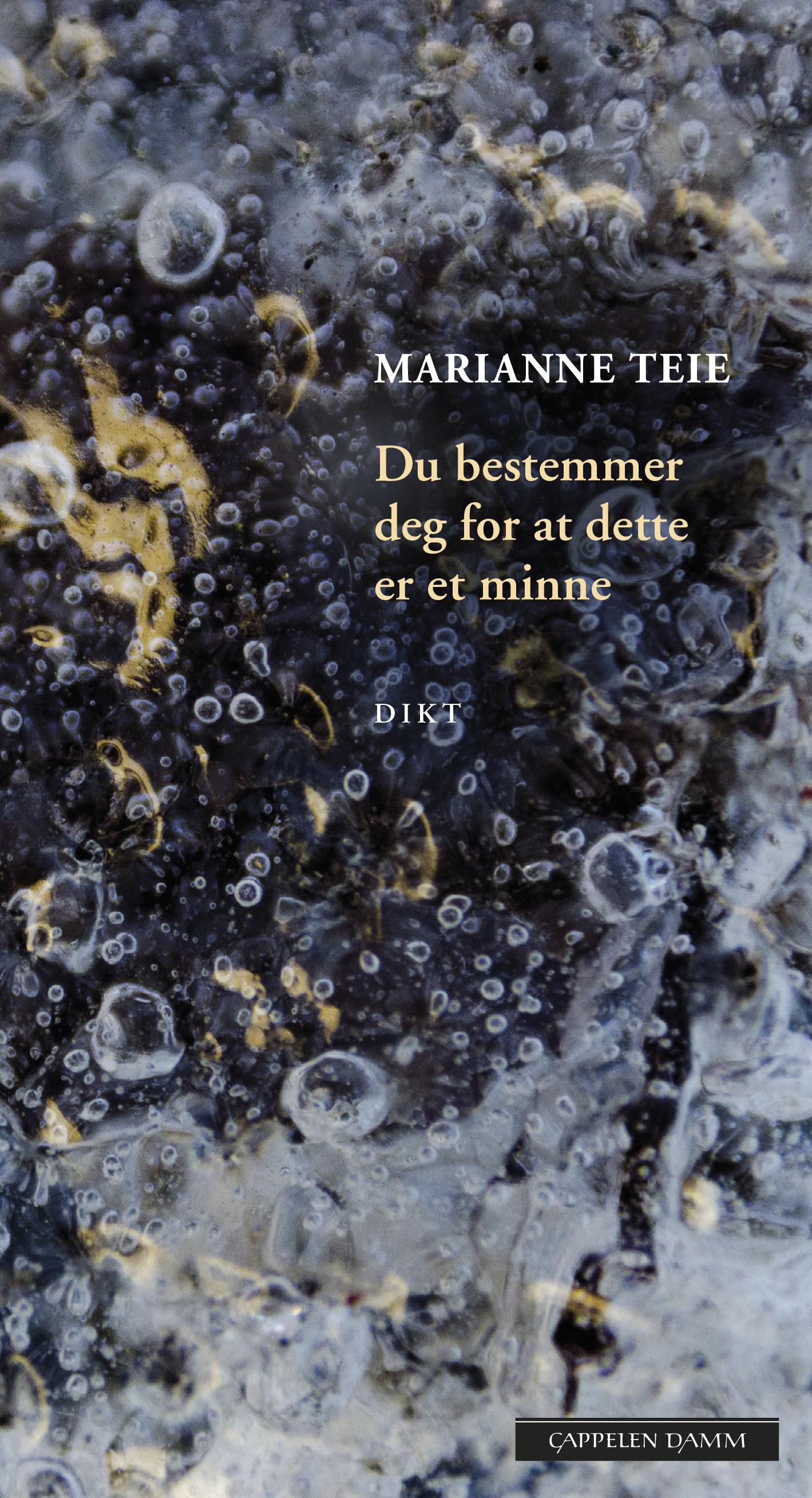"""""""Du bestemmer deg for at dette er et minne"""" av Marianne Teie"""