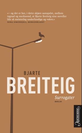 """""""Surrogater - noveller"""" av Bjarte Breiteig"""