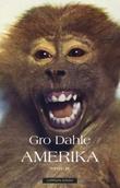 """""""Amerika - noveller"""" av Gro Dahle"""