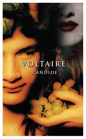 an analysis of candide by francois marie arouet de voltaire Candide by voltaire analysis  (francois-marie arouet de voltaire) 1 pages  and voltaire, real name francois marie arouet, born in paris in 1694 and died in 1778 .