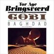 """""""Gobi Baghdad"""" av Tor Åge Bringsværd"""