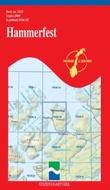 """""""Hammerfest"""" av Statens kartverk. Landkartdivisjonen"""
