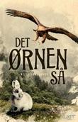 """""""Det ørnen så - roman"""" av Helge Johnsgard"""
