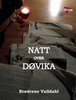 """""""Natt over Døvika"""" av Brødrene Valldahl"""