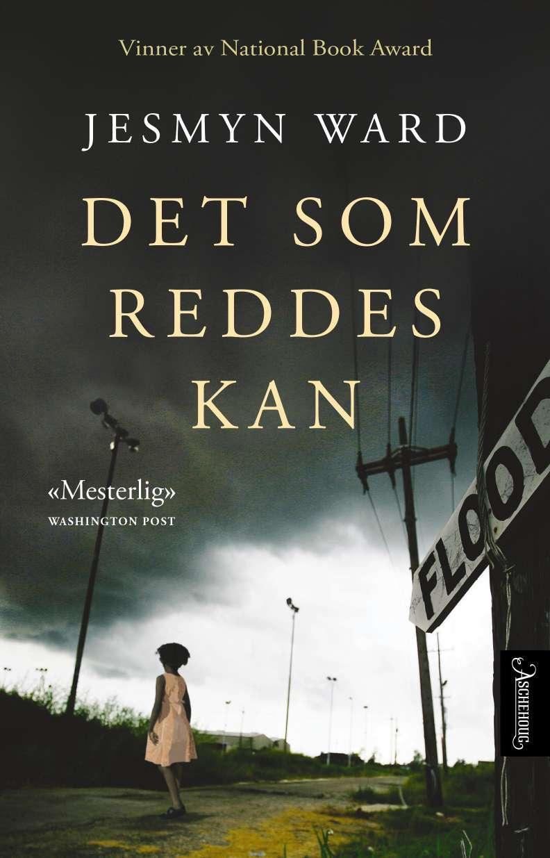 """""""Det som reddes kan - en roman"""" av Jesmyn Ward"""
