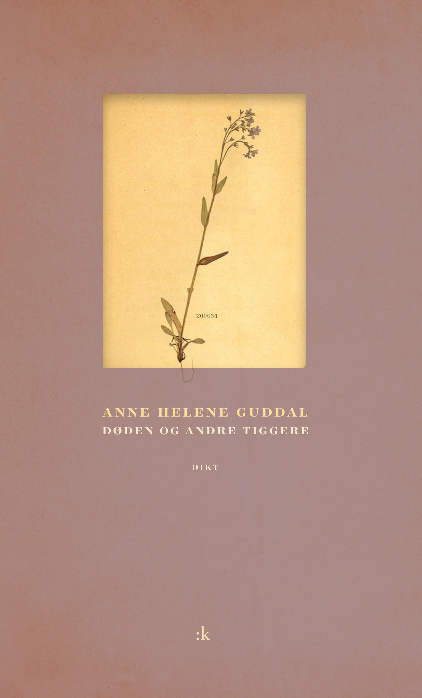 """""""Døden og andre tiggere - dikt"""" av Anne Helene Guddal"""