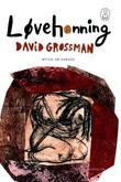 """""""Løvehonning - myten om Samson"""" av David Grossman"""