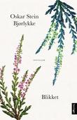 """""""Blikket - noveller"""" av Oskar Stein Bjørlykke"""
