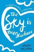 """The sky is everywhere"" av Jandy Nelson"