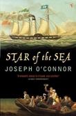 """Star of the sea farewell to old Ireland"" av Joseph O'Connor"