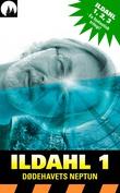 """""""Dødehavets Neptun"""" av Eirik Ildahl"""