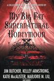 """""""My Big Fat Supernatural Honeymoon"""" av P. N. Elrod"""