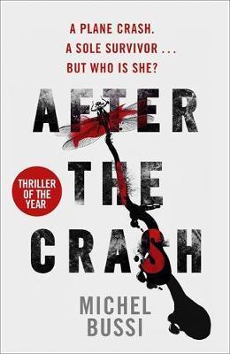 """""""After the crash"""" av Michel Bussi"""