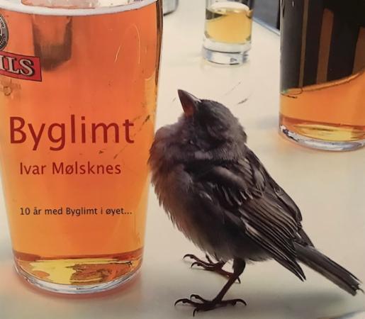 """""""Byglimt"""" av Ivar Mølsknes"""