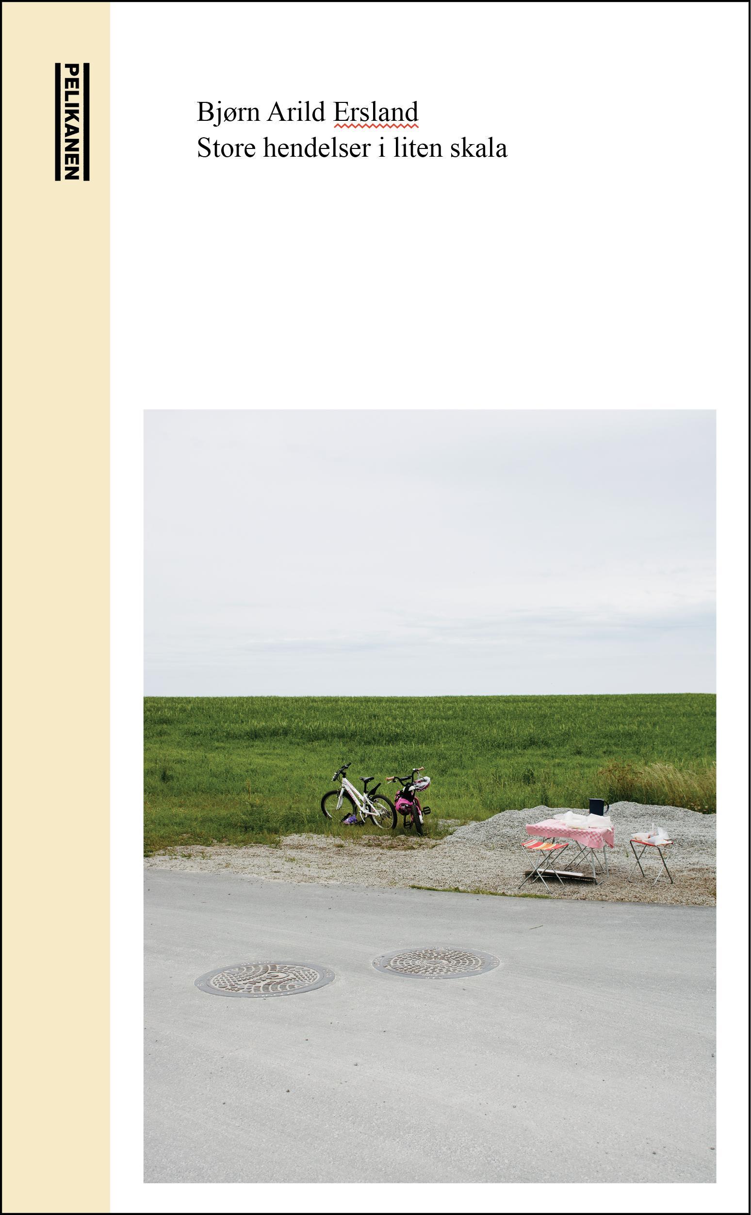 """""""Store hendelser i liten skala - roman"""" av Bjørn Arild Ersland"""