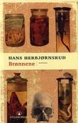 """""""Brønnene - noveller"""" av Hans Herbjørnsrud"""