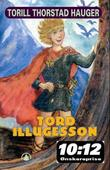 """Tord Illugesson"" av Torill Thorstad Hauger"