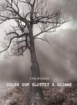 """""""Solen som sluttet å skinne"""" av Tina Øvland"""
