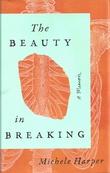 Omslagsbilde av The Beauty in Breaking