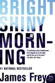 """Bright Shiny Morning (P.S.)"" av James Frey"