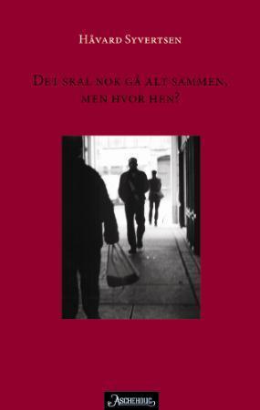 """""""Det skal nok gå alt sammen, men hvor hen? - roman"""" av Håvard Syvertsen"""